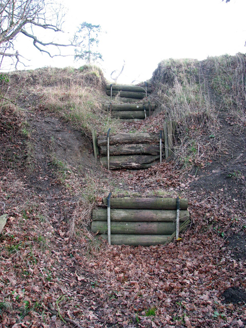 Giant steps beside path to Rendham Barnes