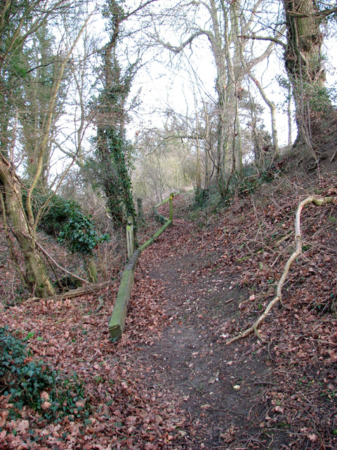 Narrow path to Rendham Barnes