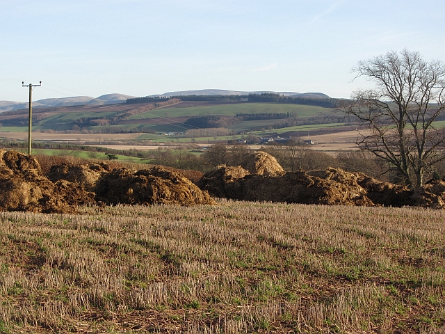 Muck and stubble, Nisbet