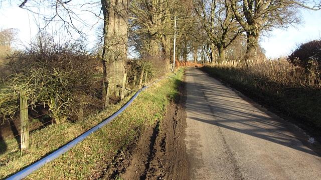 Minor road, Nisbet