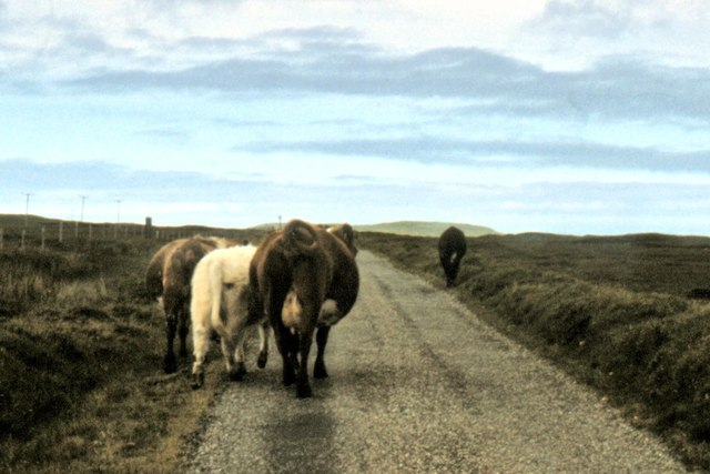 North Uist - 1981