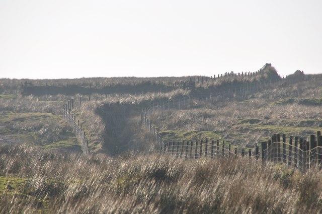 Exmoor : Looking to Exe Head