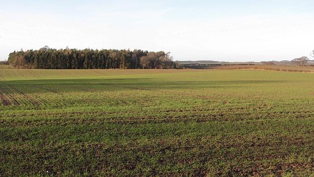 Arable land, Roxburgh