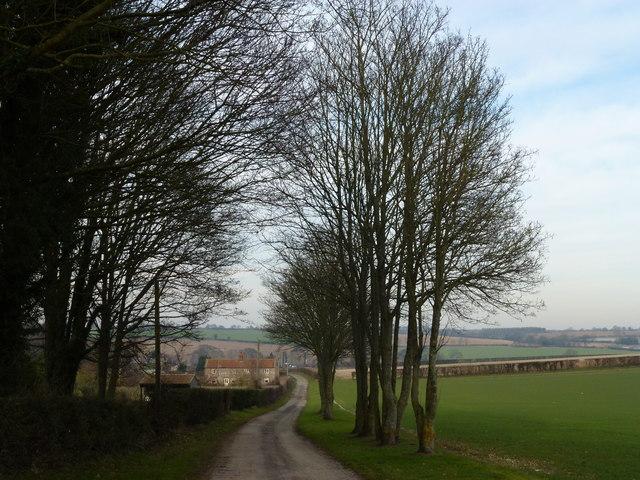 Lane from Valley Farm east of Hillington, Norfolk