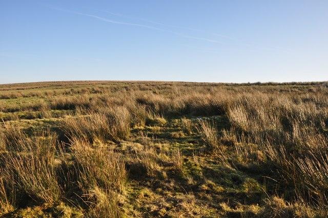 Exmoor : The Moorland