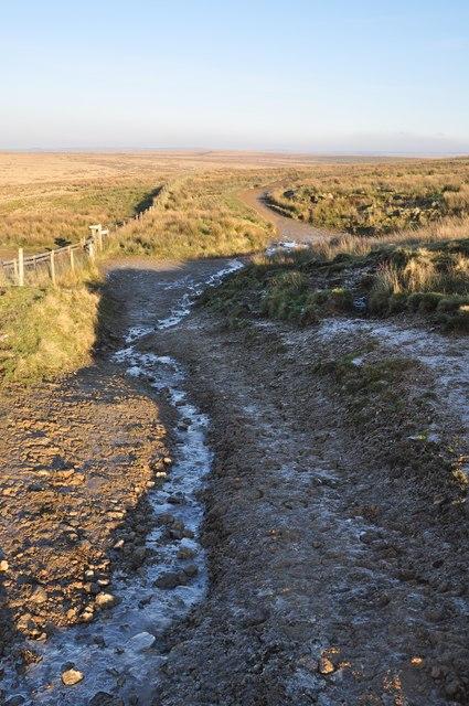 Exmoor : Footpath to Exe Head