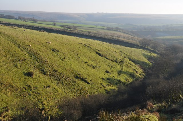 Exmoor : Tangs Bottom