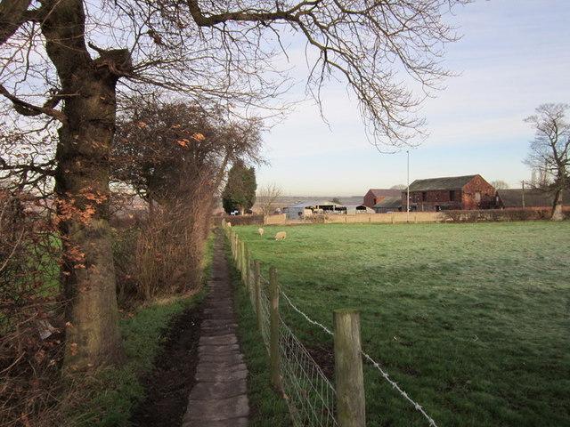 A footpath towards Birkwood Road, Altofts