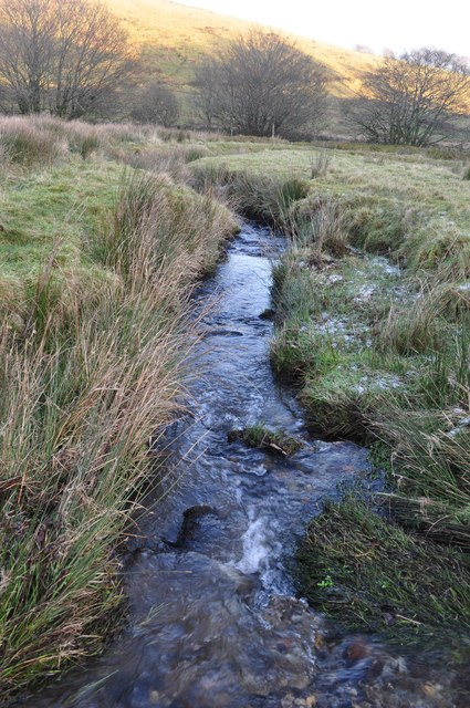 Exmoor : Small Stream