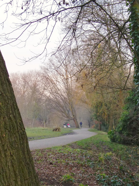 Crane Park in January