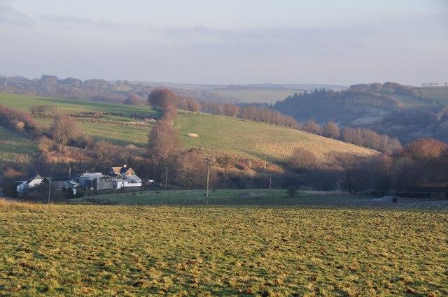 Exmoor : Moorland View