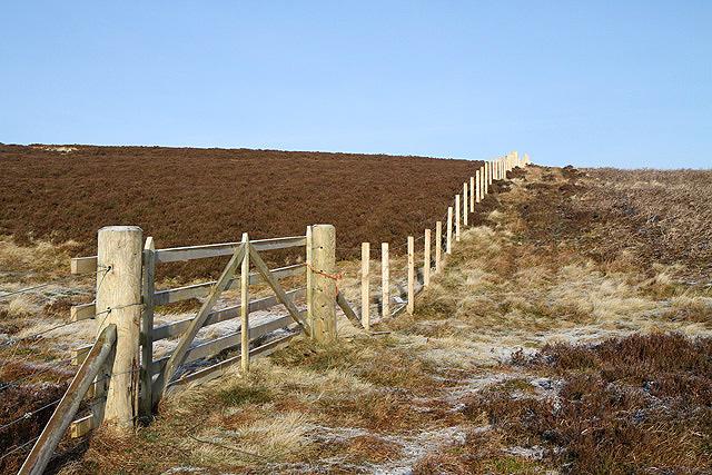 A gate and fence on South Hawkshaw Rig