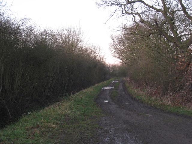 Track off Marsh Hill Lane