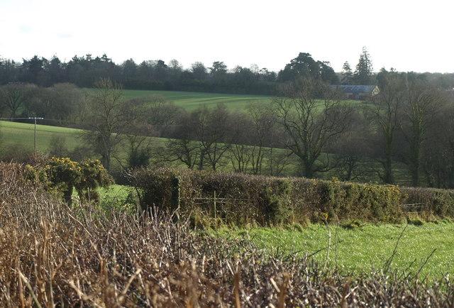 Countryside near Ashridge