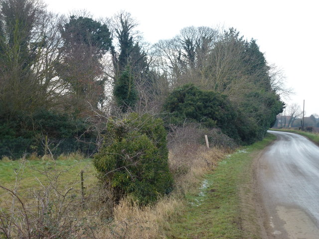 Massingham Road near the Old Rectory, Grimston