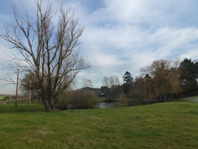 Pond near farm on Massingham Road