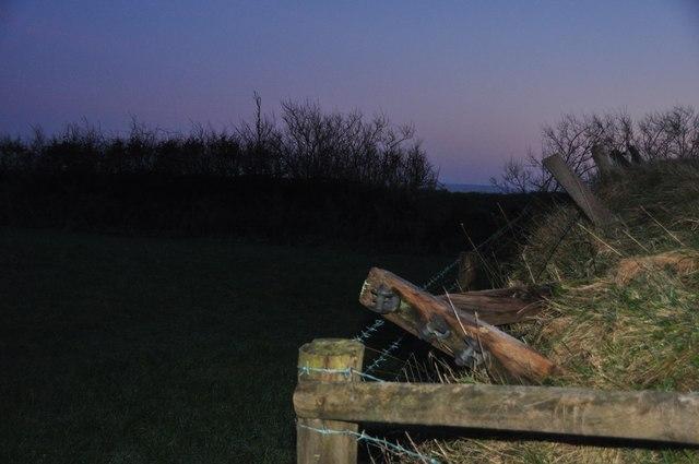 Exmoor : Field at Dusk