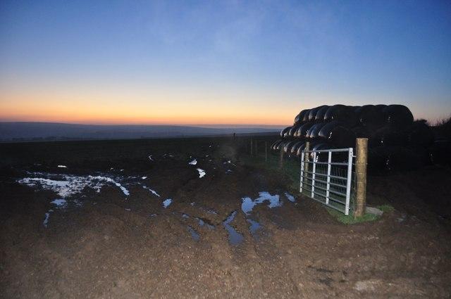 Exmoor : Hay Bales & Field
