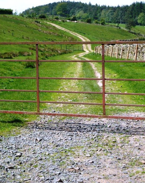 Gated Farm Track near Wydon Farm