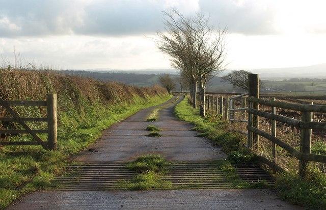 Farm road to Luxton Barton