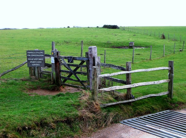 Gate and cattle grid, Friston