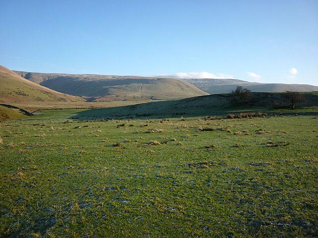Pasture above Acorn Sike