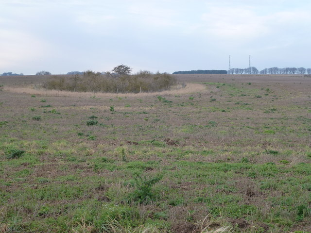 Marl pit on Massingham Heath