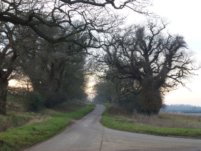 Lane to Gayton Thorpe, Norfolk