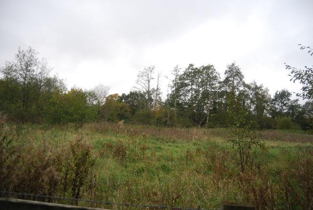 Rough grassland, Blackwater Valley