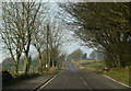 SK2954 : Looking along Oakerthorpe Road by Andrew Hill
