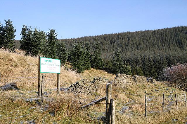 Craig Douglas Forest