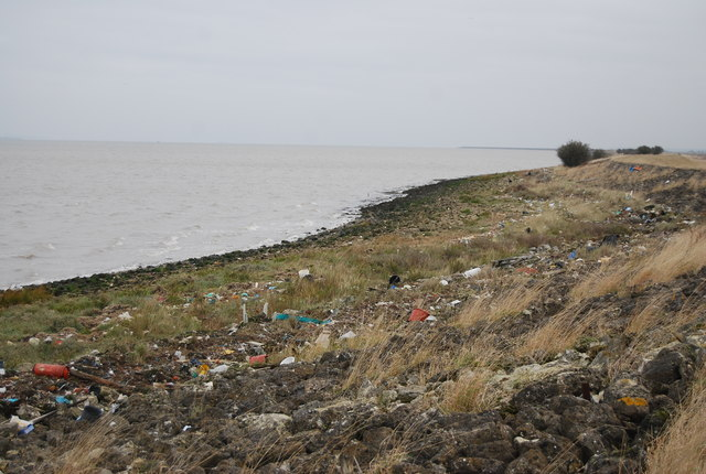 Flotsam and jetsam, Thames Estuary