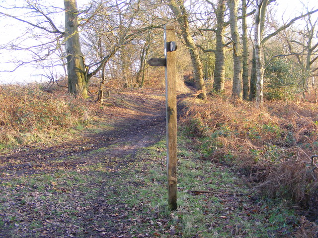 Way Signpost