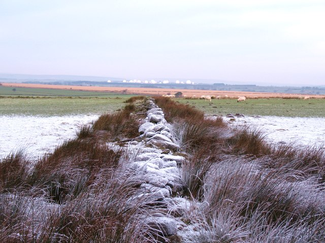 Remains of stone wall, Sandwith Moor