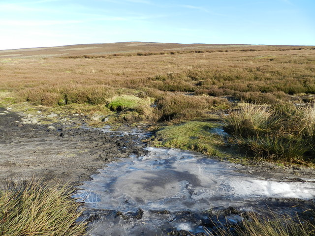 Frozen puddle on path across Middle Moor