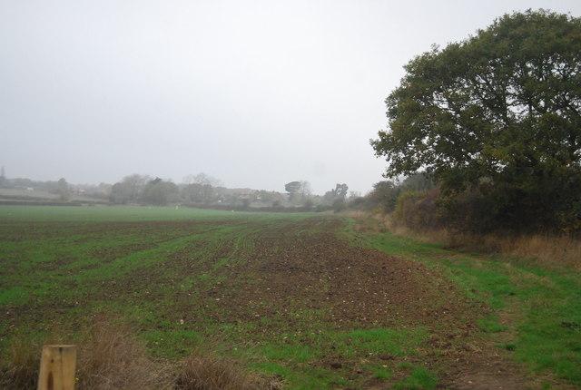 Edge of a field near Ridgeway Farm