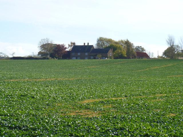 Drybank Farm