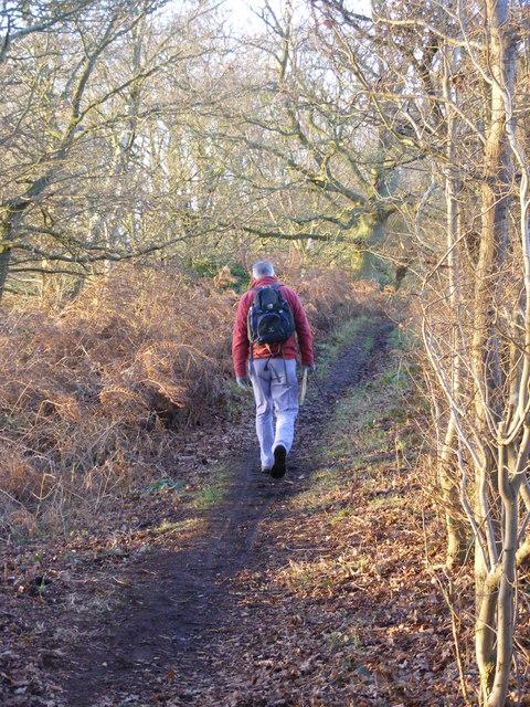 Abbots Castle Hill Walk