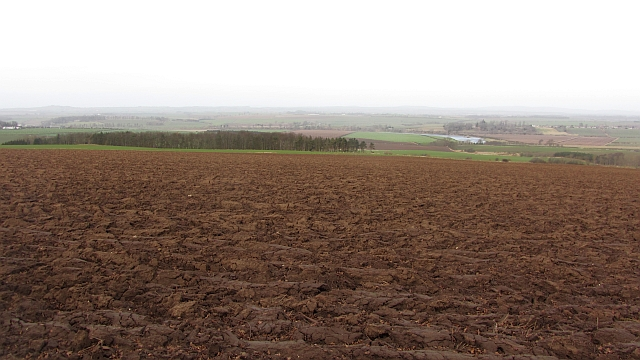 A ploughed field, Nottylees