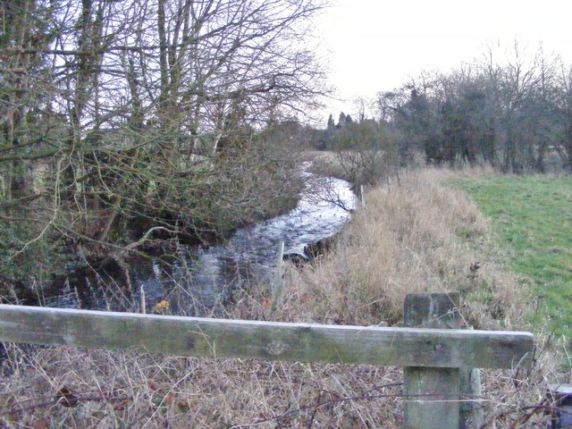 Brook Downstream