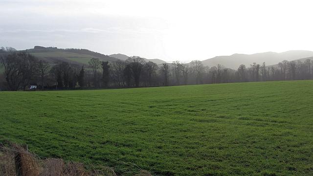 Field near Yetholm