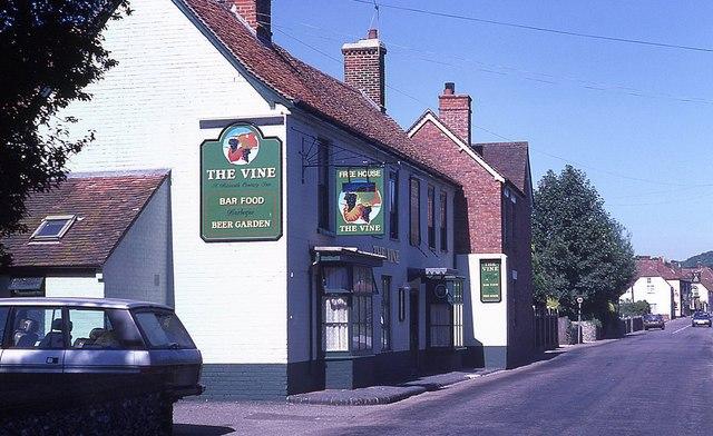 The Vine, Hambledon