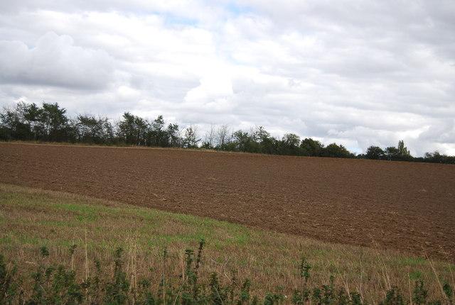 Farmland, Akenham