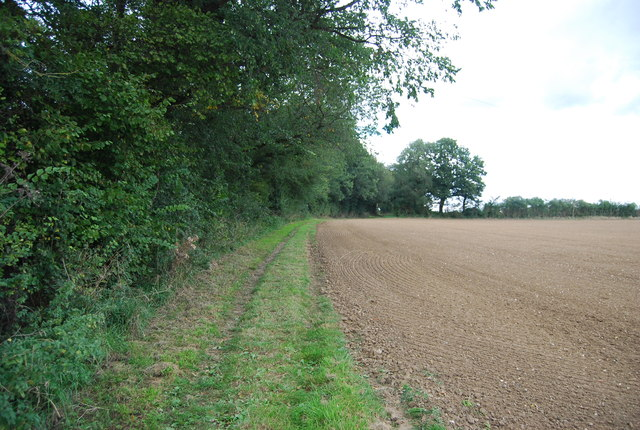 Bridleway follows the hedge
