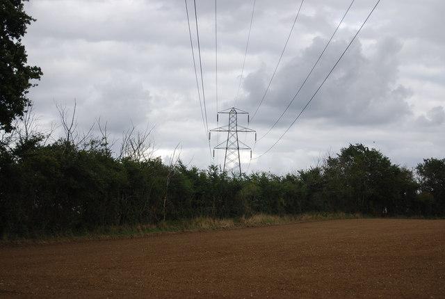 Pylon behind a hedge