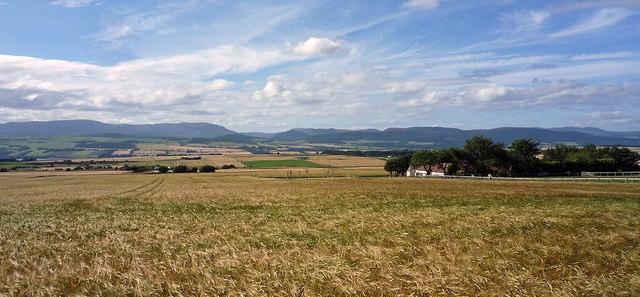 Field beside Upper Badrain farm