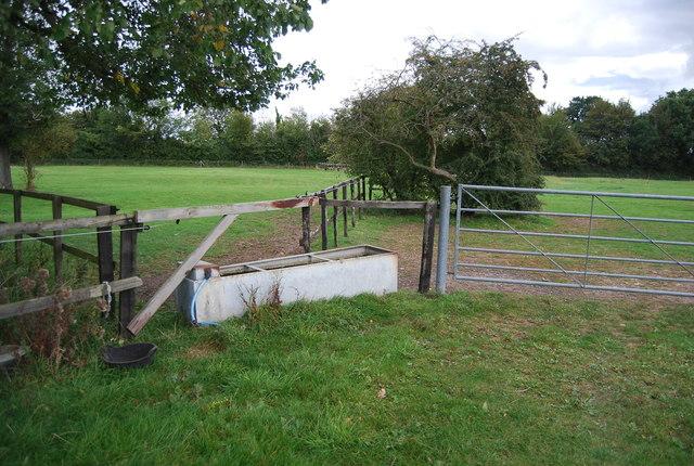 Water trough