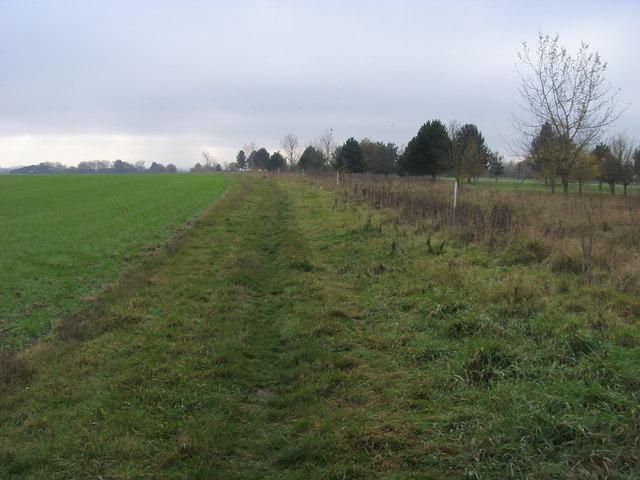 Bridleway to Hadden Hill