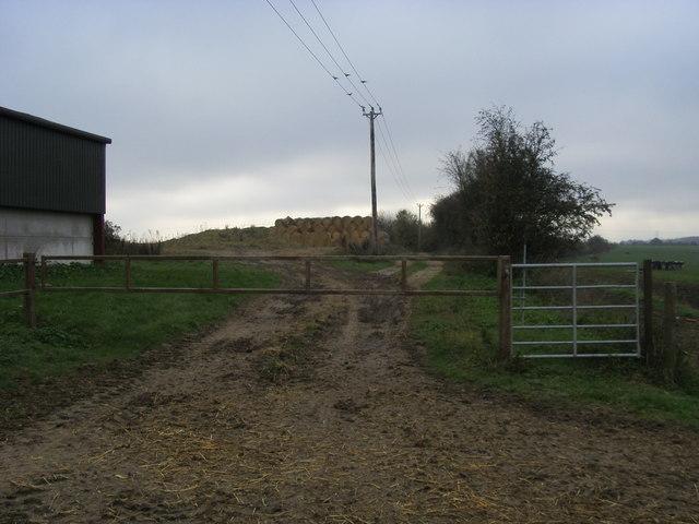 Bridleway by Field Farm