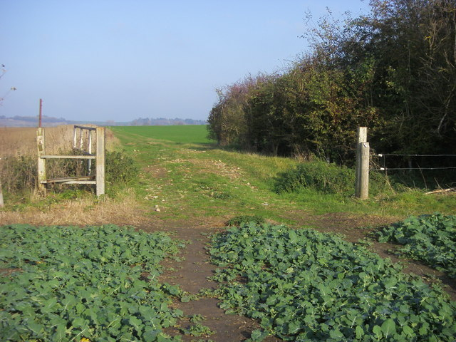Footpath to Mackney